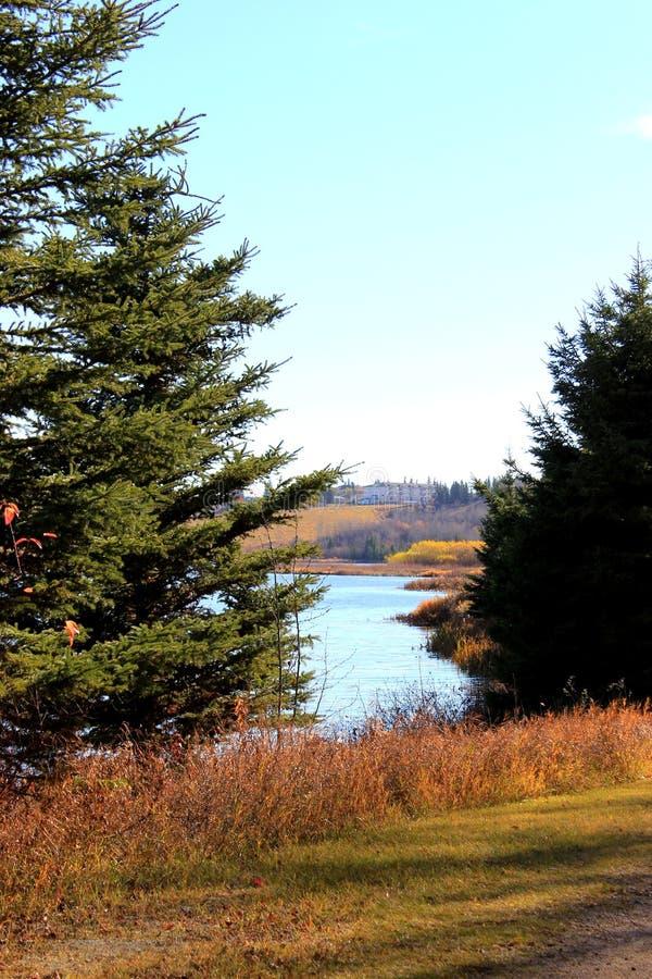 秋天的银朱的河 库存图片