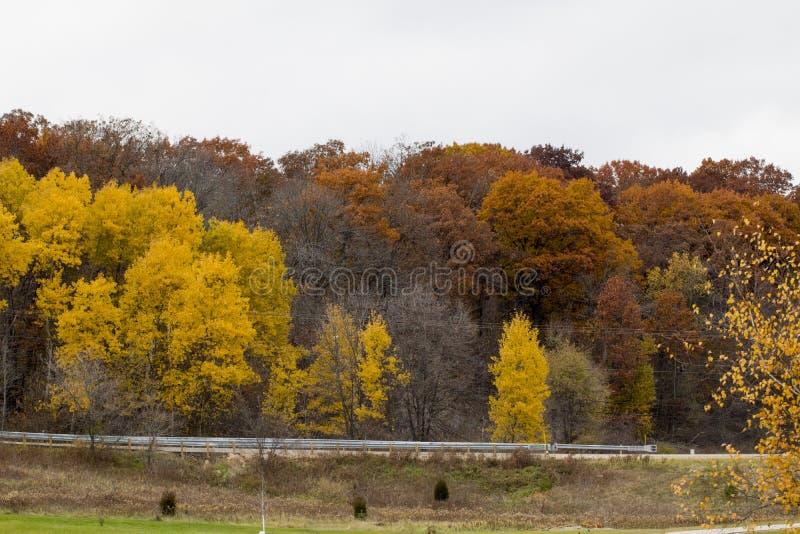 秋天的颜色在中西部 免版税库存图片