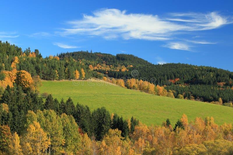 秋天的颜色在捷克乡下 免版税库存照片