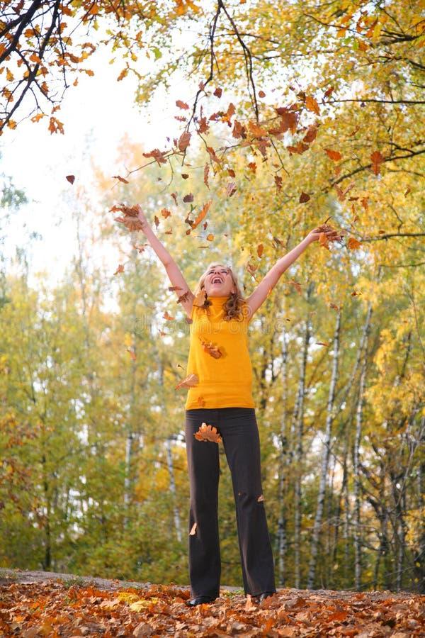 秋天秀丽白肤金发的叶子停放投掷 库存照片