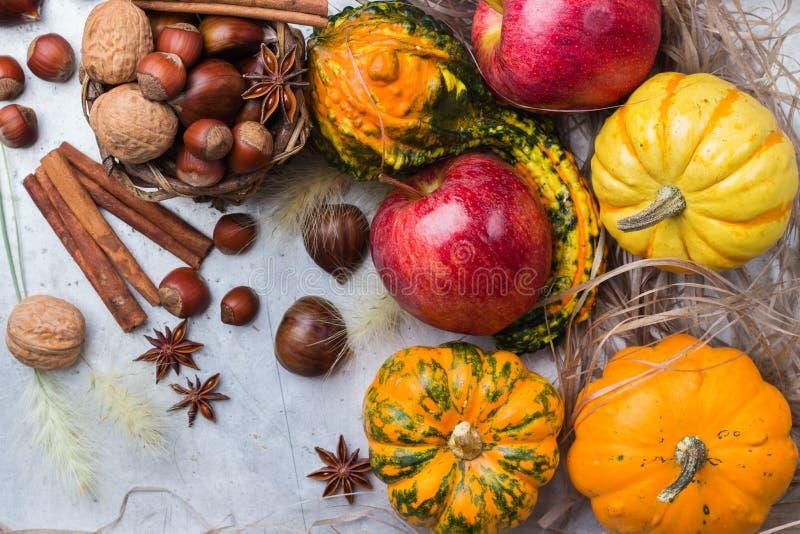秋天秋天万圣夜静物画构成用南瓜坚果栗子 免版税库存图片