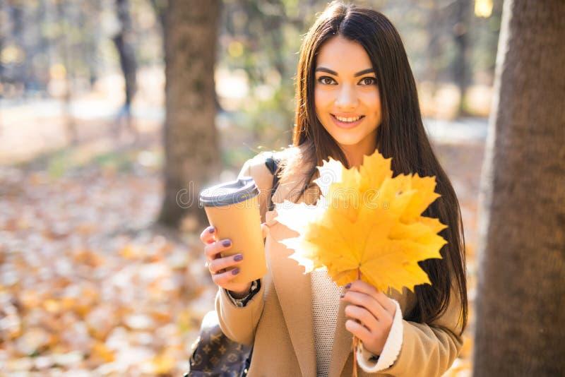 秋天秋天概念 美女饮用的咖啡在秋叶下的秋天公园 金黄秋天公园 库存照片