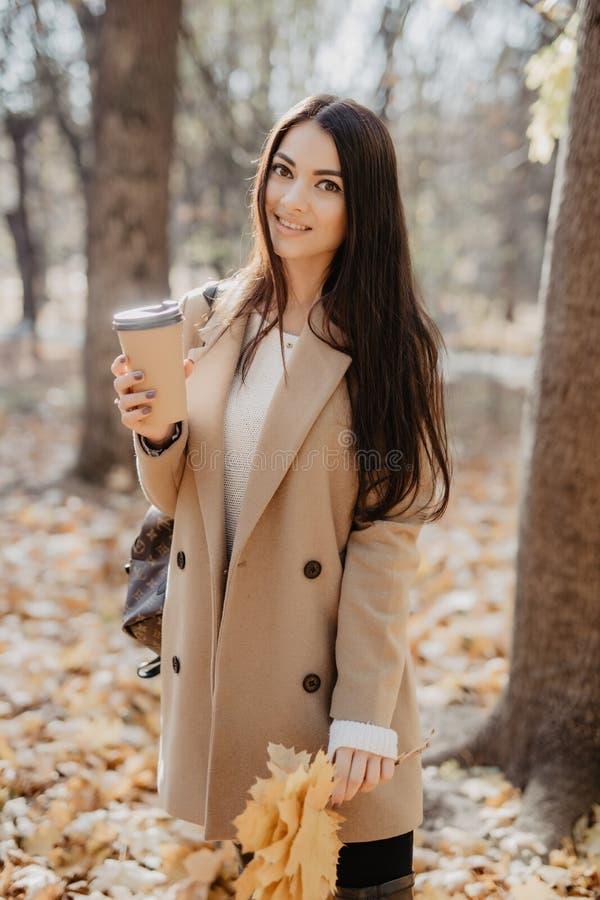 秋天秋天概念 美女饮用的咖啡在秋叶下的秋天公园 金黄秋天公园 图库摄影