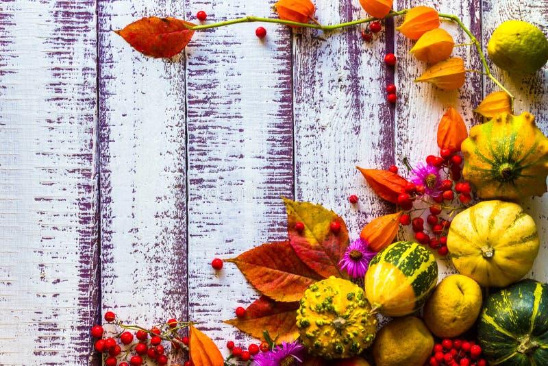 秋天秋天背景桌设置背景菜结果实 免版税库存照片