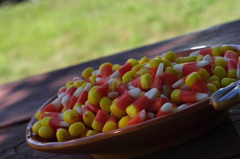 秋天糖果盘充满糖味玉米 免版税库存照片