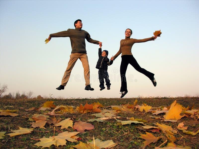 秋天系列飞行愉快的叶子 免版税图库摄影