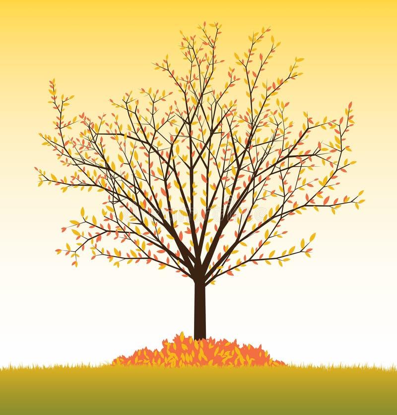 秋天结构树向量 皇族释放例证