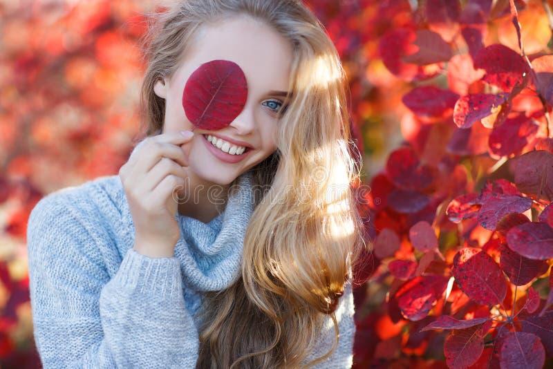 秋天美丽的公园妇女 免版税库存图片