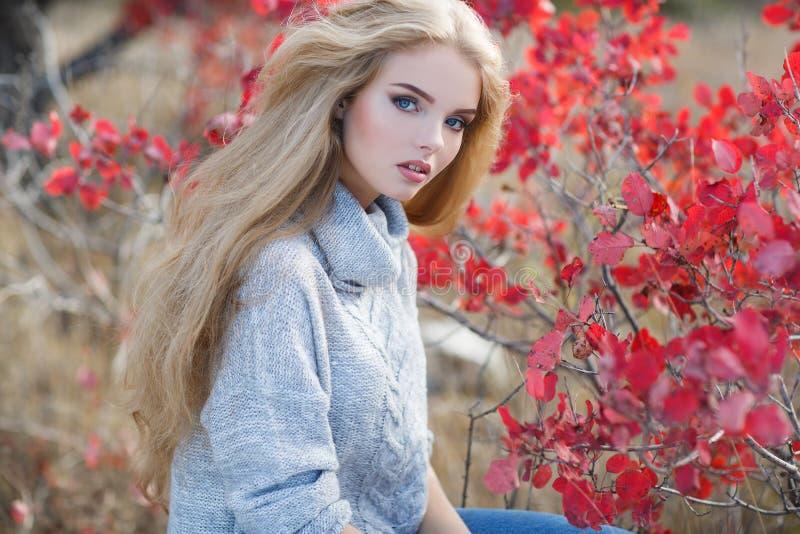 秋天美丽的公园妇女 免版税图库摄影