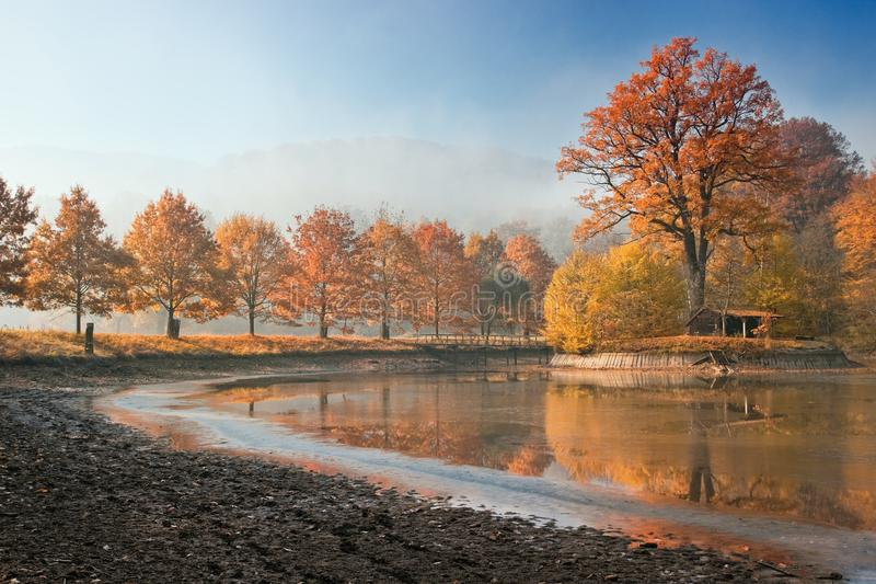 秋天美丽的池塘 免版税库存照片