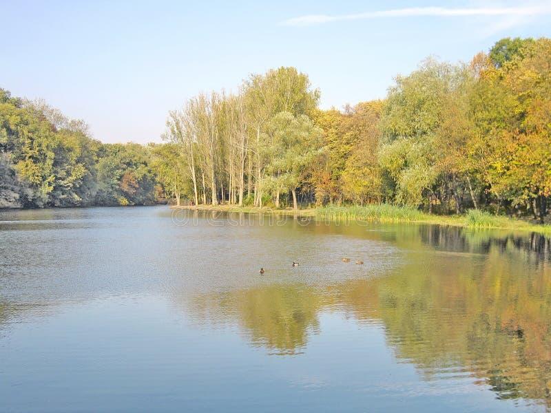 秋天美丽的湖横向反映水 免版税库存图片