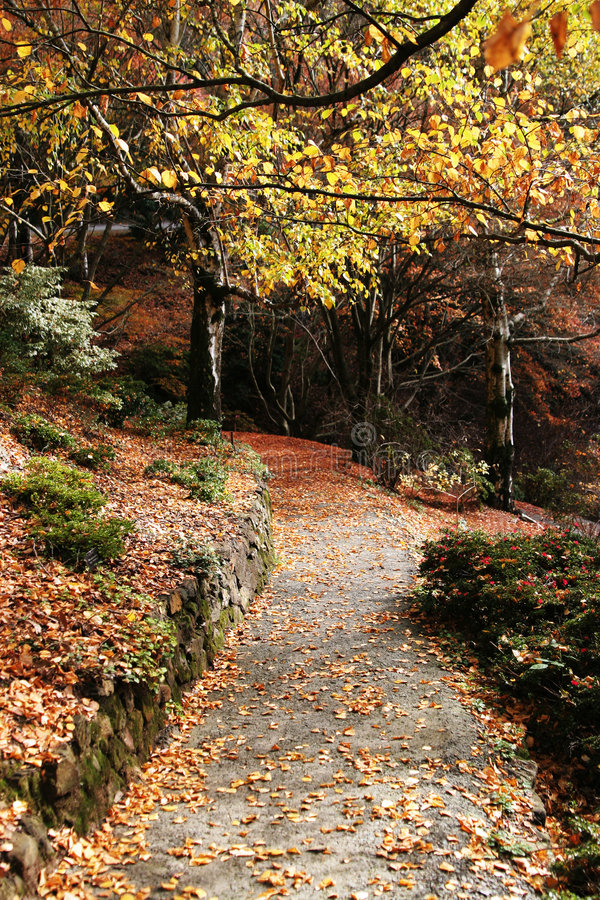 秋天美丽的路径 免版税库存照片