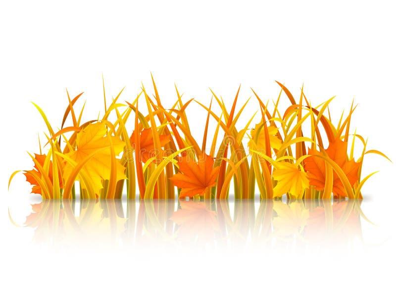 秋天背景关闭草本质 向量例证