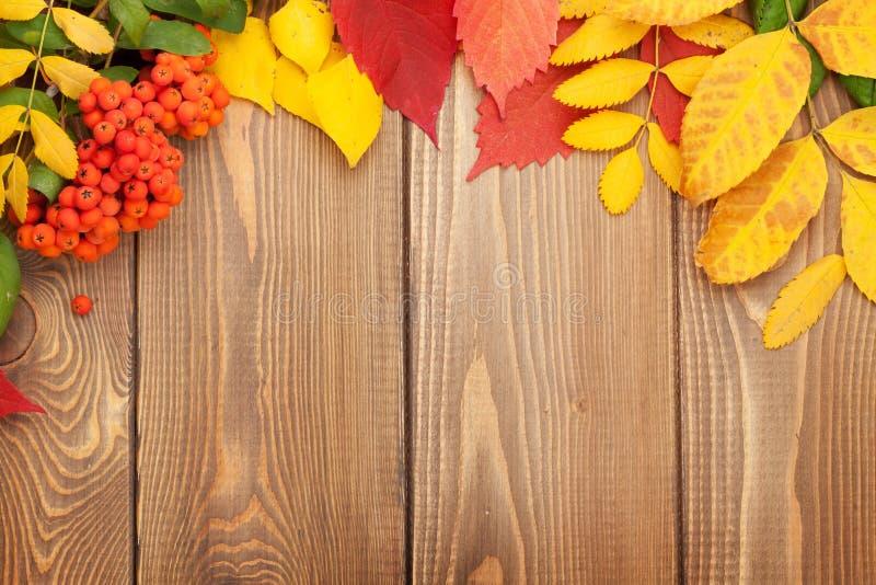秋天背景在空间木头的复制叶子 免版税库存图片