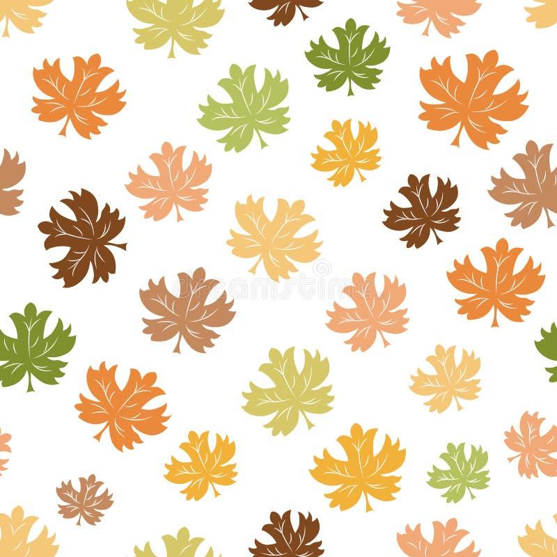 秋天背景特写镜头上色常春藤叶子橙红 落的五颜六色的槭树的无缝的样式在白色离开 皇族释放例证