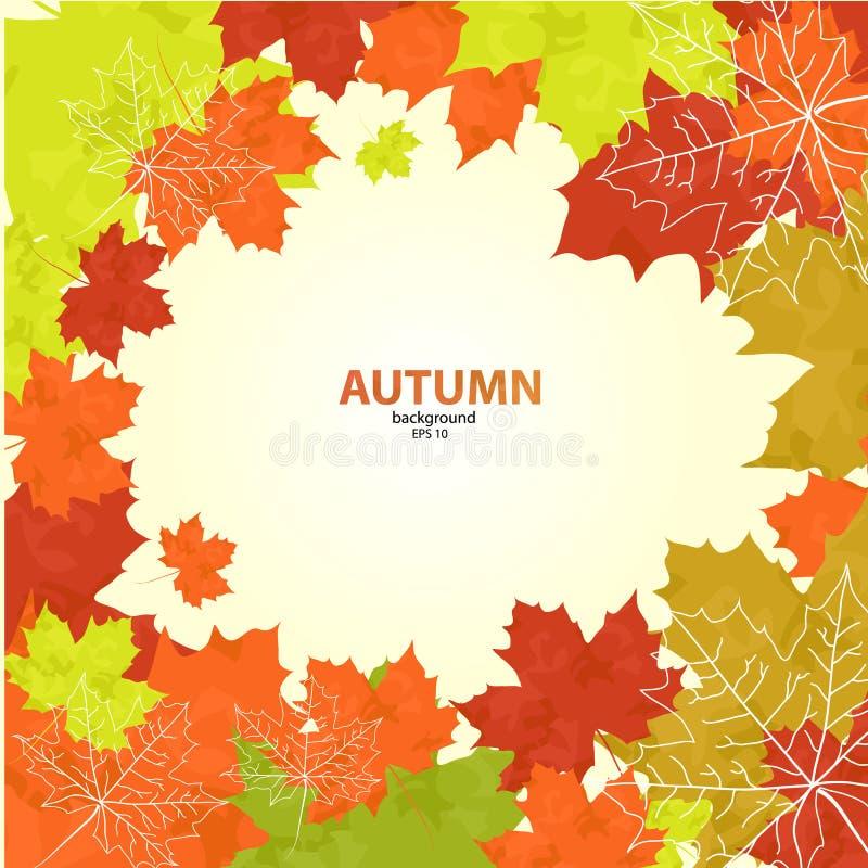 秋天背景特写镜头上色常春藤叶子橙红图片
