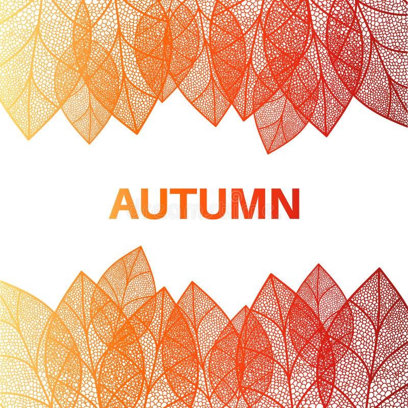 秋天背景留给无缝图片
