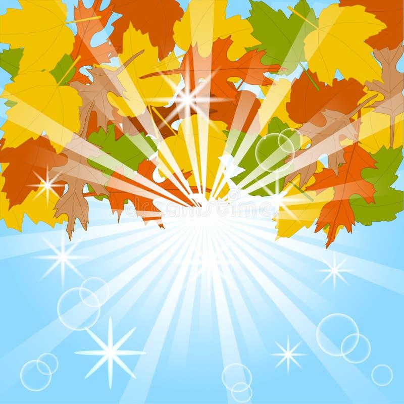 秋天背景蓝色留下天空 库存例证