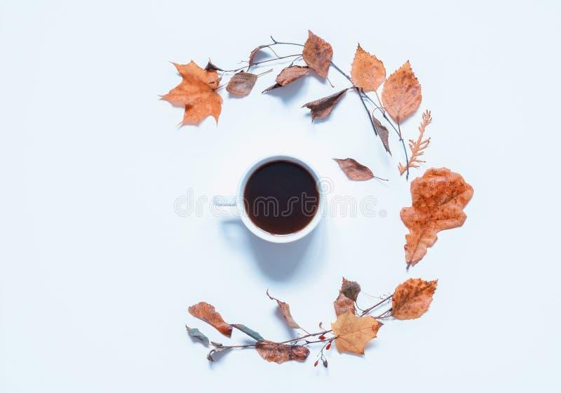 秋天背景-咖啡和各种各样的干燥秋叶在白色背景 仍然秋天生活 免版税图库摄影