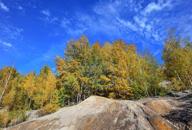 秋天自然背景 与黄色叶子、明亮的天空蔚蓝和花岗岩山的树 库存图片