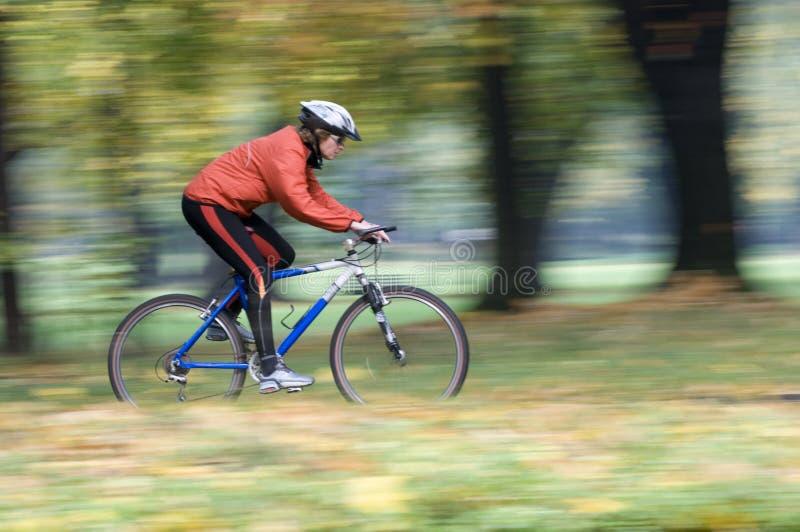 秋天自行车骑马 图库摄影
