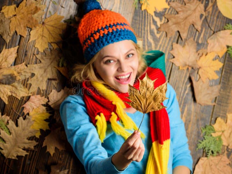 秋天舒适大气 在木背景的女孩快乐的面孔位置有叶子顶视图 秋天和秋天季节概念 免版税库存图片