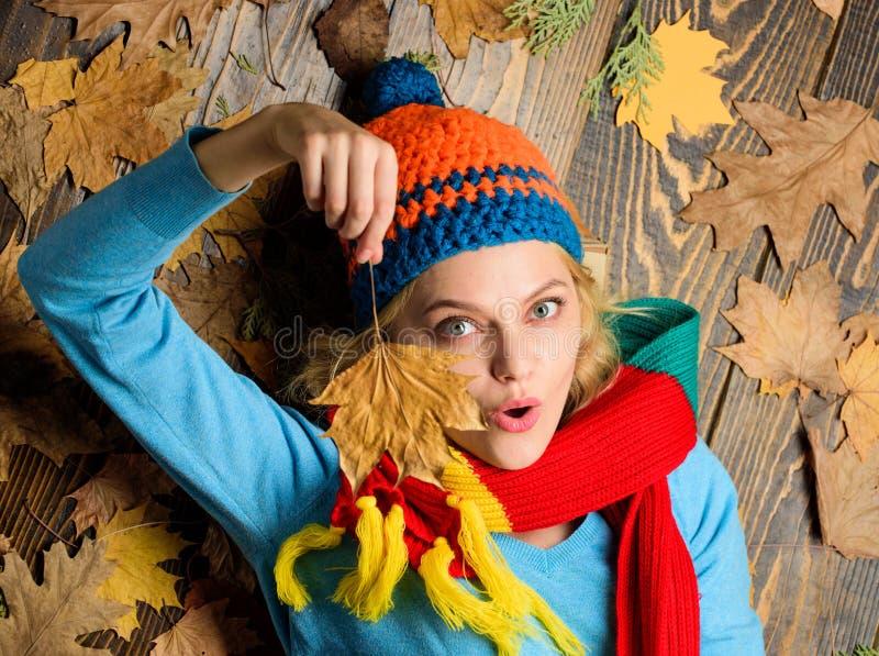 秋天舒适大气 被编织的辅助部件 在木背景的女孩快乐的面孔位置有叶子顶视图 秋天和 图库摄影