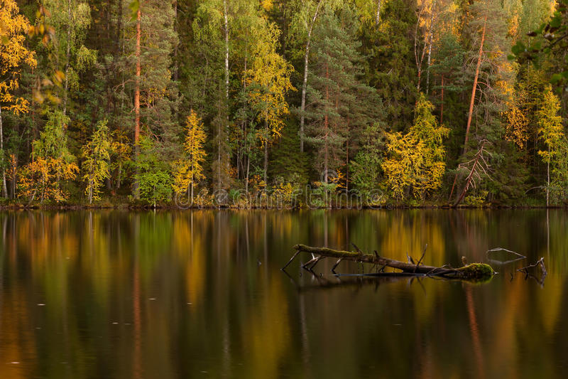 秋天芬兰湖 免版税库存图片