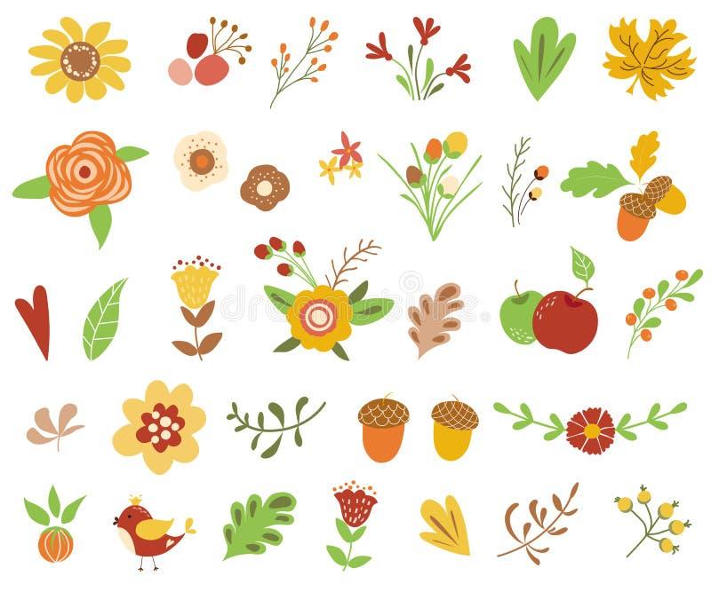 秋天花卉集合五颜六色的花卉收藏黄色赤土陶器花离开莓果花卉clipart导航例证的秋天 库存例证
