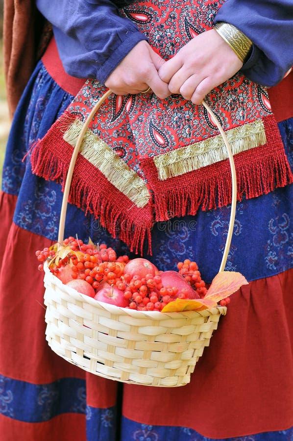 秋天苹果和花楸浆果在篮子 免版税库存图片