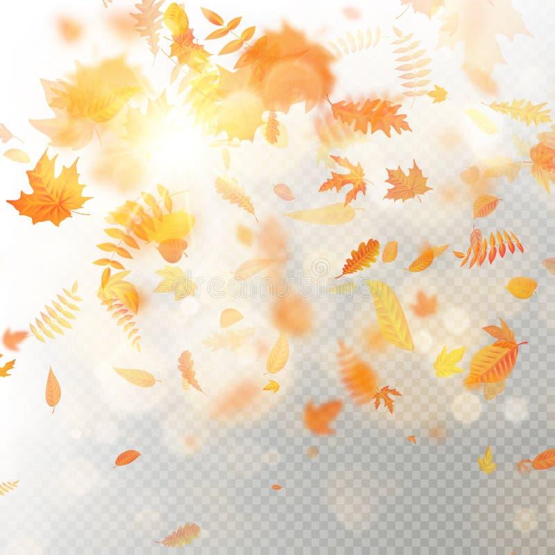 秋天落的叶子的作用分层堆积与浅DOF迷离 秋季叶子秋天模板 温暖的颜色 10 eps 库存例证