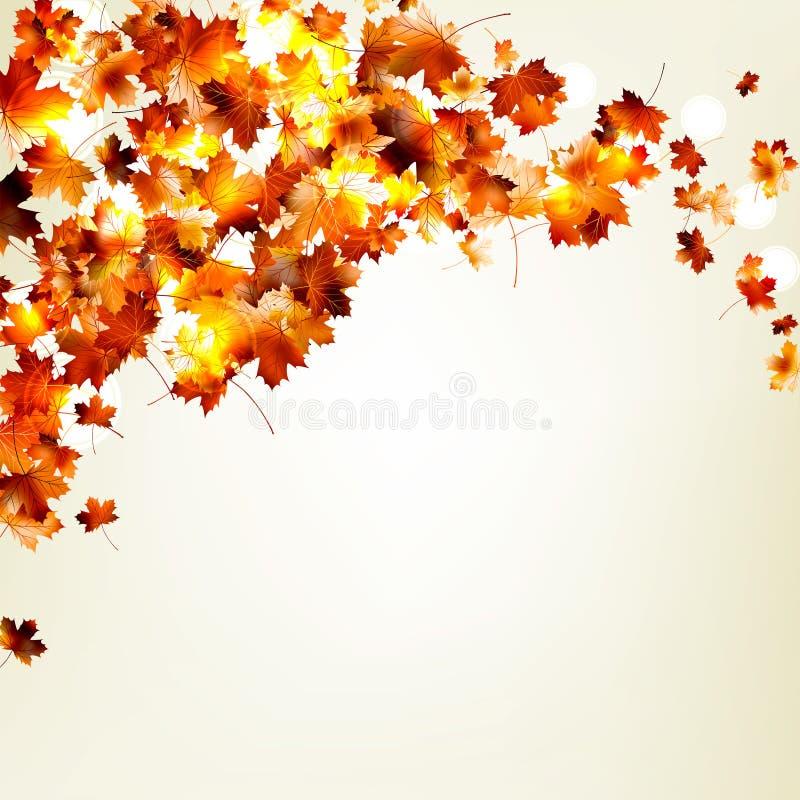秋天落的叶子背景。EPS 10 库存例证