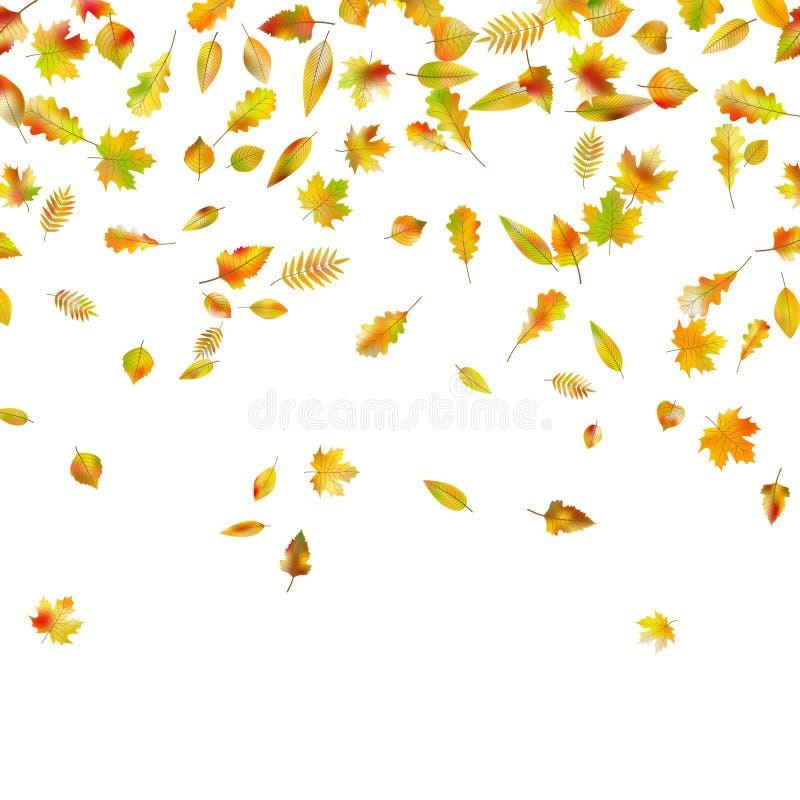 秋天落的叶子 EPS 10向量 库存例证