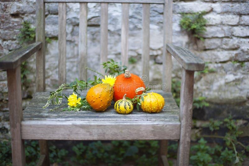 秋天蓝色长的本质遮蔽天空 在木头的秋天果子 感恩 在一把老椅子的秋天菜在庭院里 免版税库存照片