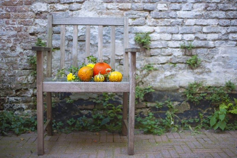 秋天蓝色长的本质遮蔽天空 在木头的秋天果子 感恩 在一把老椅子的秋天菜在庭院里 免版税库存图片