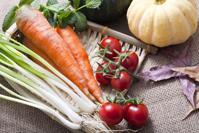 秋天蔬菜 图库摄影