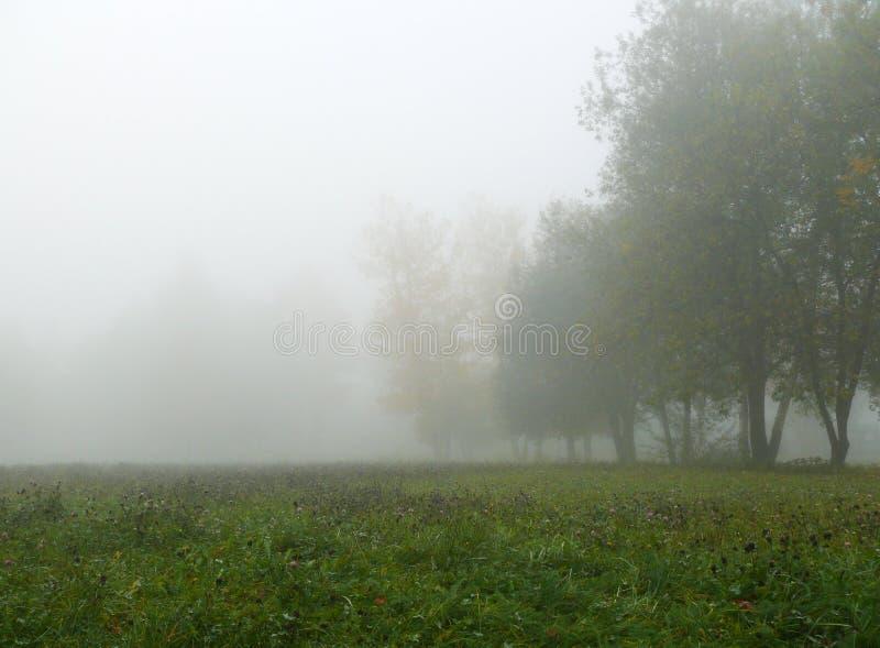 秋天薄雾 图库摄影