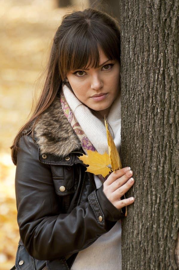 秋天藏品叶子妇女年轻人 免版税库存照片