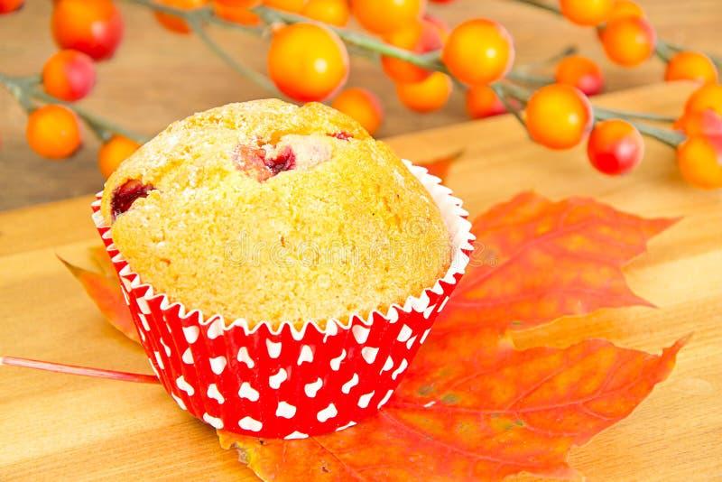 Download 秋天蛋糕用莓果 库存照片. 图片 包括有 果子, 烹饪, 蛋糕, 奶油, 感激的, 蓝莓, 自治权, 叶子 - 62529834