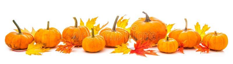 秋天装饰安排了与干叶子和南瓜我 免版税库存图片