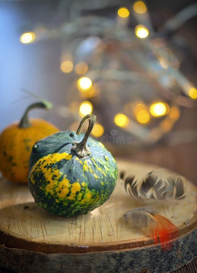 秋天装饰用小南瓜 免版税库存照片