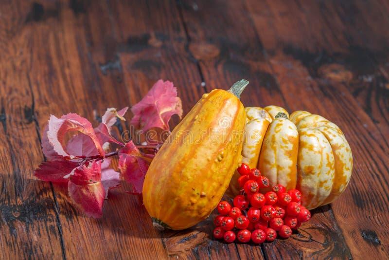 秋天装饰:五颜六色的南瓜、莓果和叶子 免版税库存照片