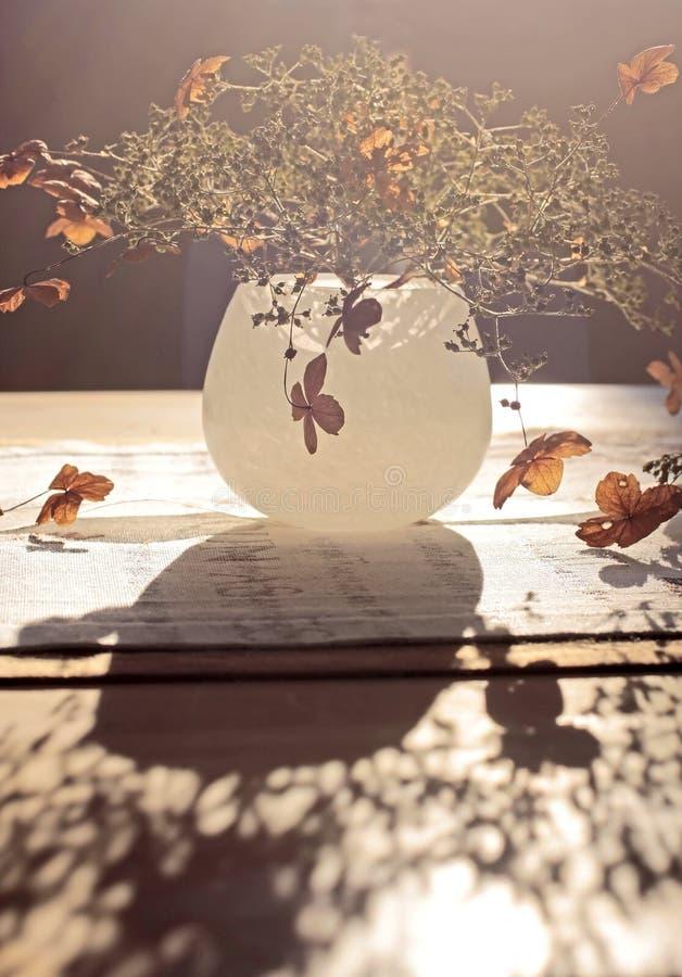 秋天装饰 库存照片