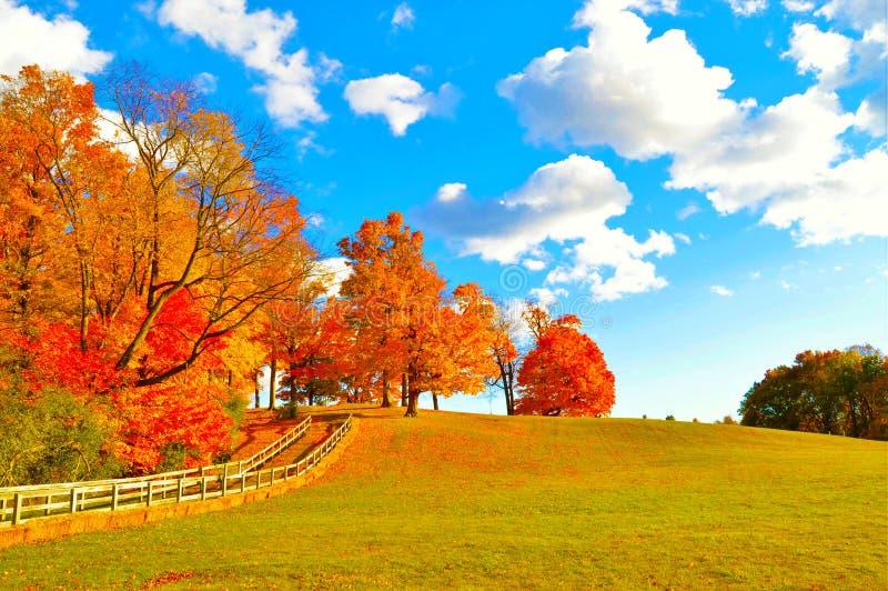 Download 秋天路 库存例证. 插画 包括有 browne, 槭树, brander, 11月, 户外, 10月, 早晨 - 72364196