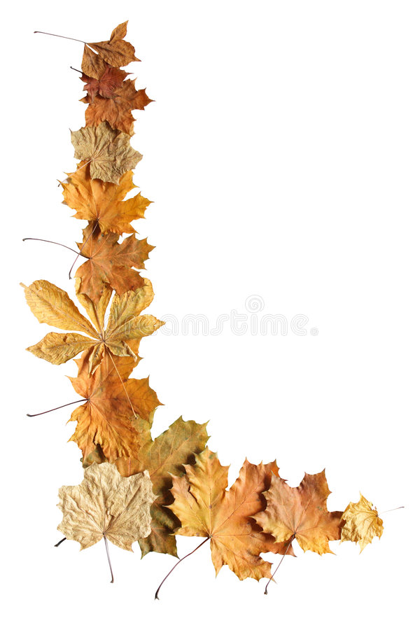 秋天边界 免版税库存图片