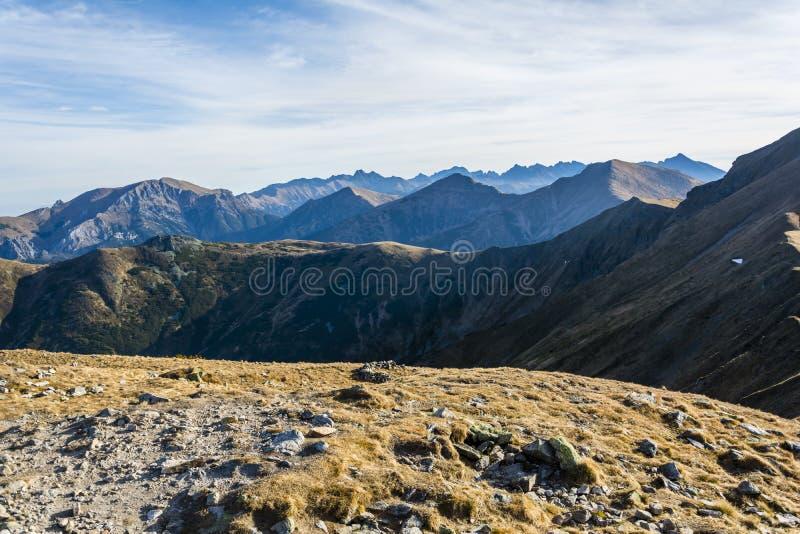 秋天金叶有些结构树  山峰的看法 免版税库存照片