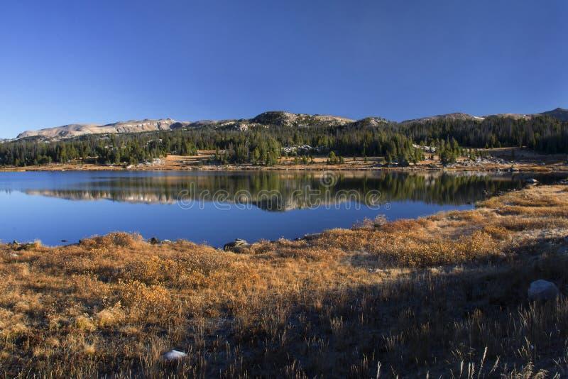 秋天金子和蓝色在高海拔的 免版税库存图片