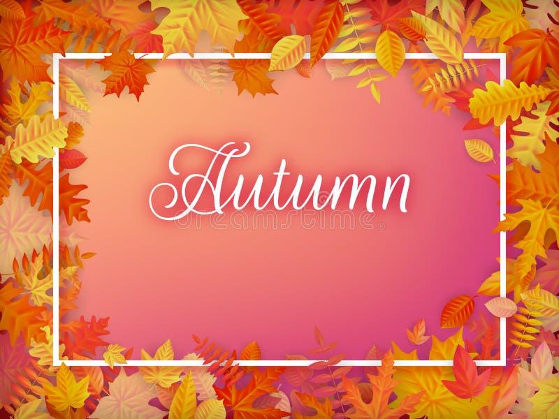 秋天销售在框架的背景布局从叶子 购物销售或电视节目预告海报和框架传单或网横幅 EPS 库存例证