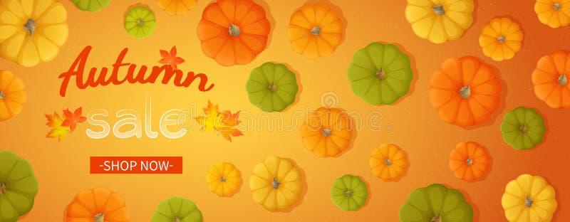 秋天销售的网横幅 水平的横幅飞行物用黄色,绿色,橙色南瓜,在橙色背景的叶子 向量例证