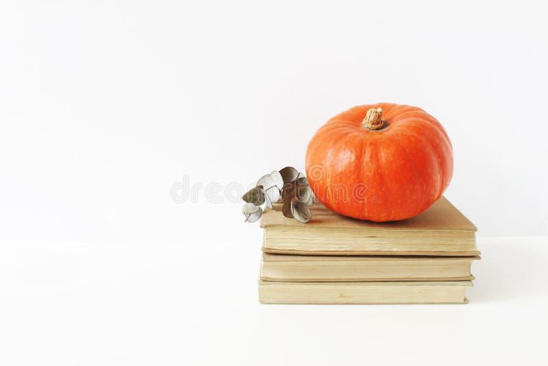 秋天静物画构成 葡萄酒场面用橙色南瓜和玉树在放置老堆分支的书  库存图片